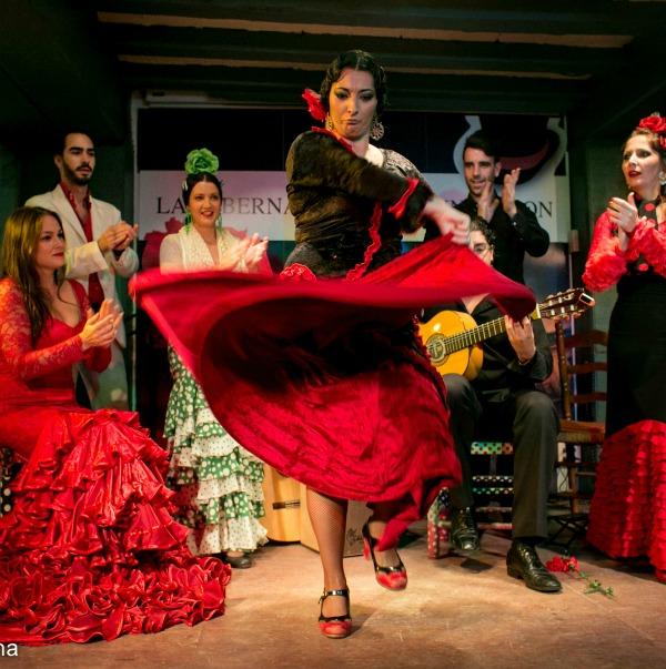 SERVICES flamenco 2